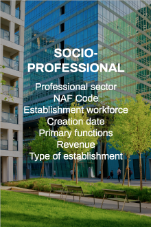 socio-professional